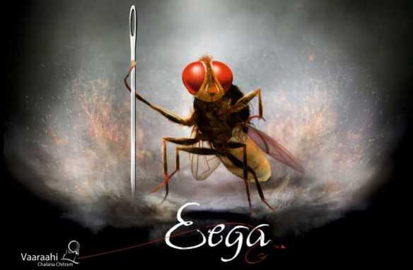 Image result for eega